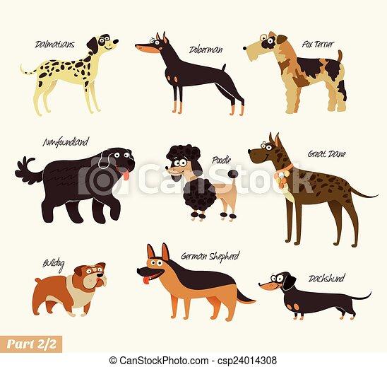 Dog breeds - csp24014308