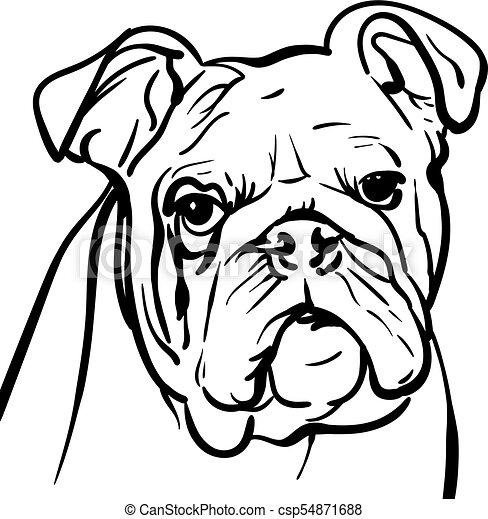 dog bulldog outlines illustration dog bulldog outlines a rh canstockphoto com english bulldog puppy clipart english bulldog clipart free