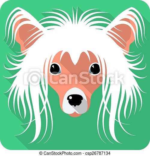 dog Chinese Crested icon flat design  - csp26787134