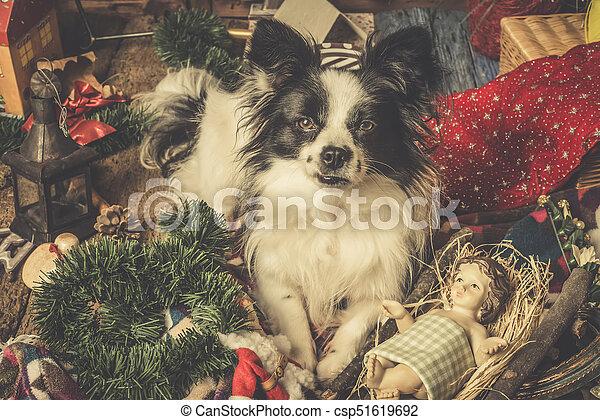 Dog Christmas Cards.Dog Christmas Cards Naughty Puppy