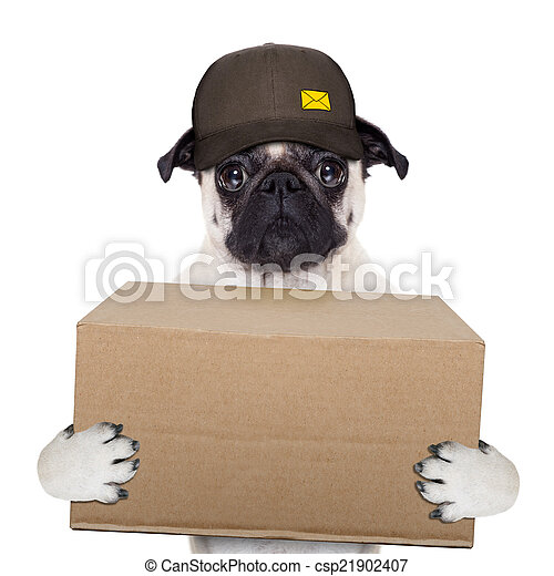 dog delivery post - csp21902407