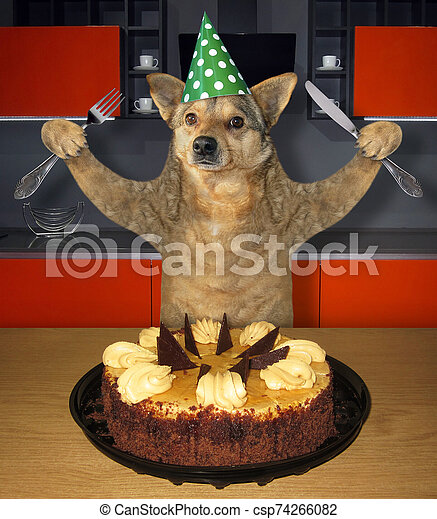 Fine Dog Eating Birthday Cake In Kitchen The Dog In A Birthday Hat Personalised Birthday Cards Paralily Jamesorg