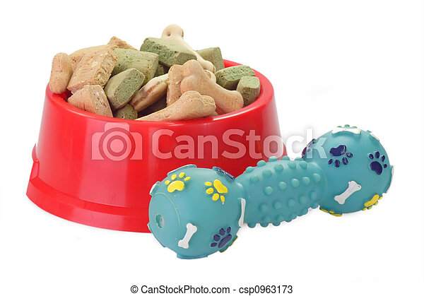 Dog Food in a Bowl - csp0963173