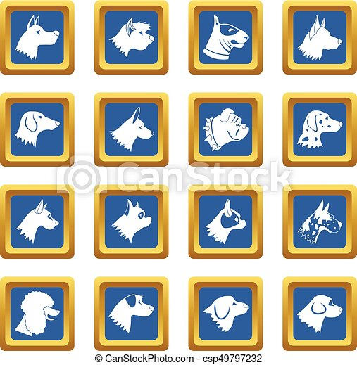 Dog icons set blue - csp49797232