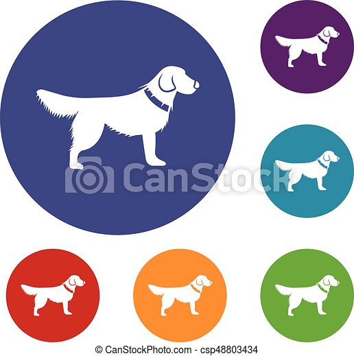 Dog icons set - csp48803434