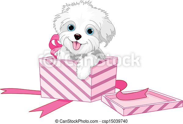 Dog in box - csp15039740