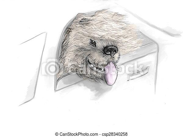 dog in car - csp28340258