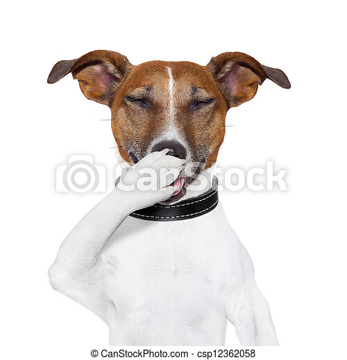 dog laughing at a joke - csp12362058