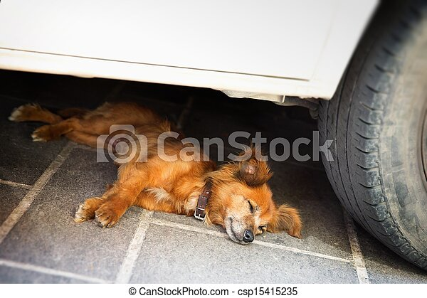 Dog Lying in the shadow of the car - csp15415235