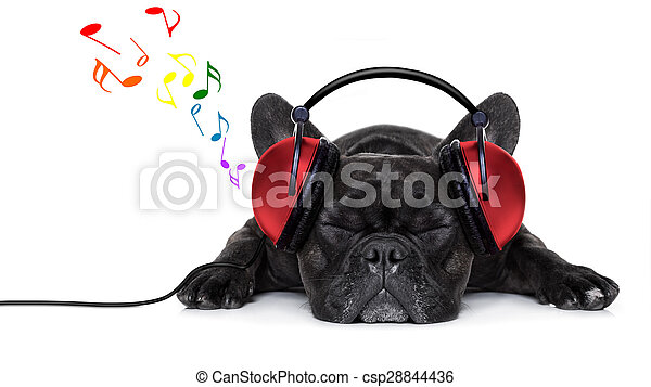 dog music  - csp28844436