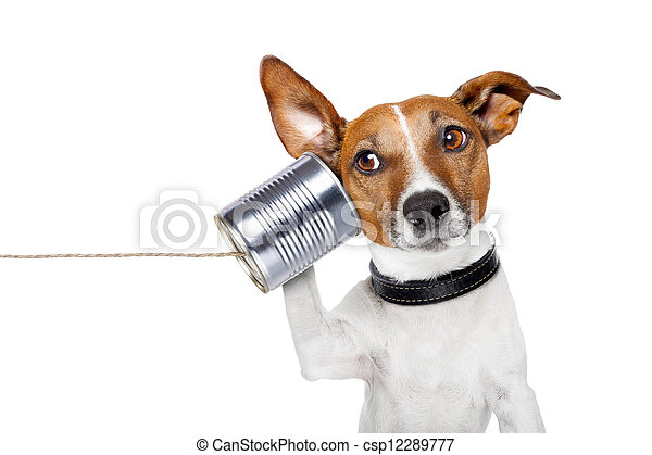 dog on the phone - csp12289777