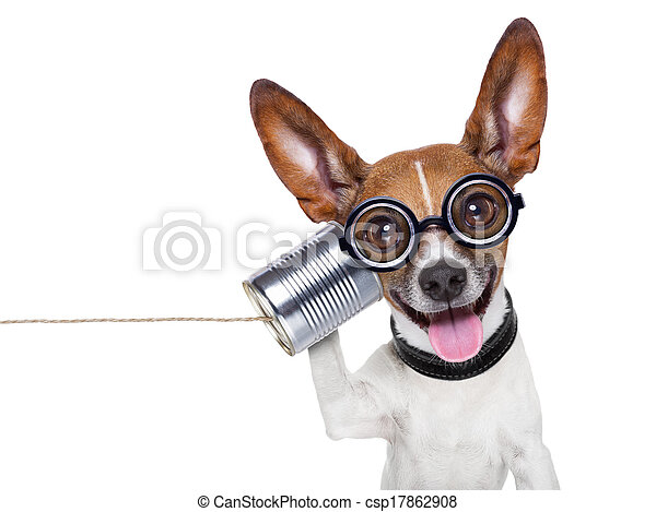 dog on the phone - csp17862908