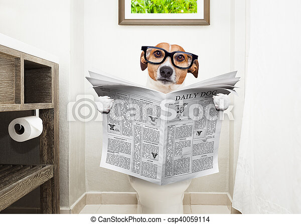 dog on toilet seat reading newspaper - csp40059114