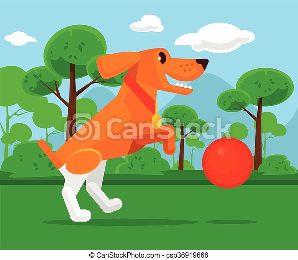 dog playing with ball csp36919666