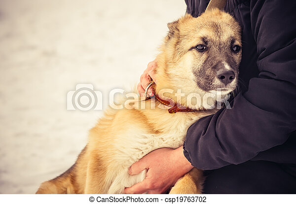 Dog Shepherd Puppy and Woman hugging Outdoor Lifestyle and Friendship concept - csp19763702