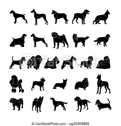 dog silhouette. Vector Illustration.. Collection set - csp55939869