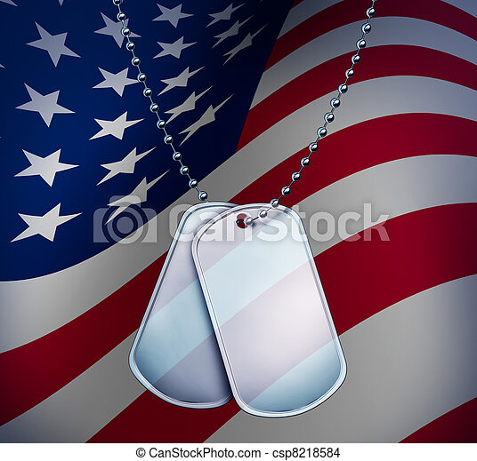 Dog Tags with An American Flag - csp8218584