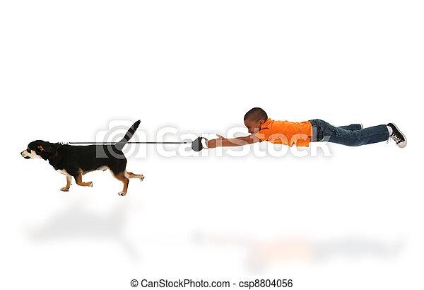 Dog Taking Happy Handsome Black Boy Child for Walk - csp8804056