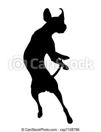 Dog training - csp7108796