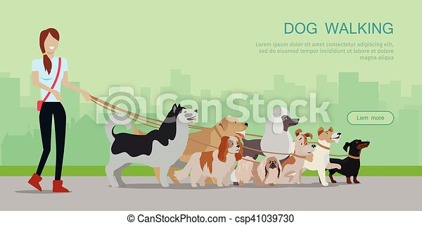 Dog Walking Banner. Woman Walk with Different Dogs - csp41039730