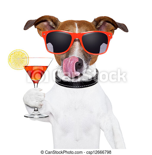 dog with cocktail - csp12666798