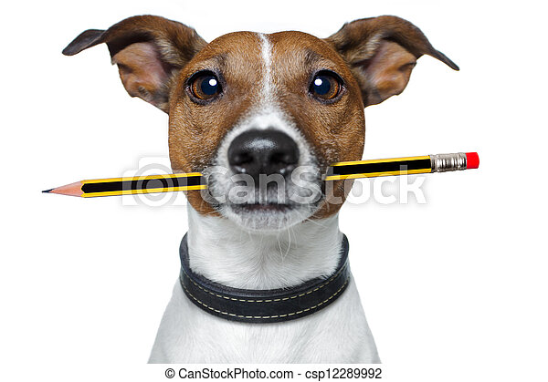 dog with pencil and eraser - csp12289992