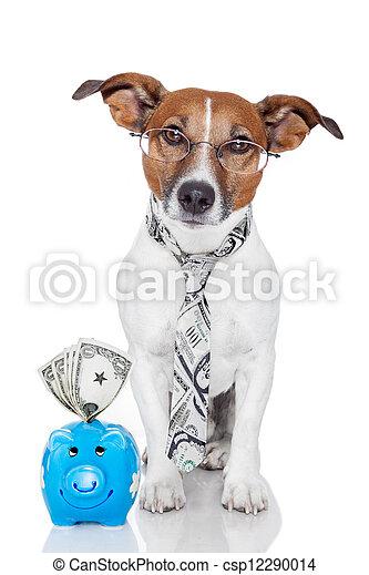 dog with piggy bank - csp12290014