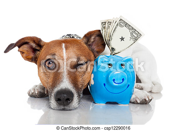 dog with piggy bank - csp12290016