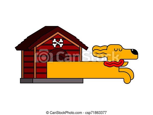 Dachshund en Doghouse. Perro largo en perrera - csp71863377