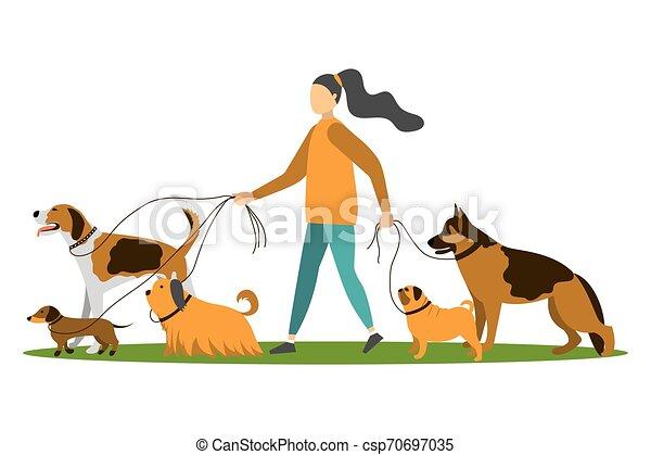 Mujer joven caminando con cinco perros. - csp70697035
