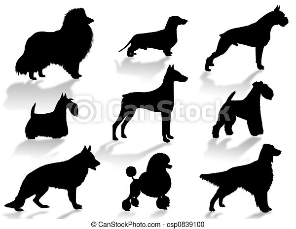Dogs breeds silhouette - csp0839100