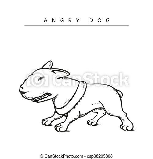 Dogs characters pitbull. Funny animals cartoon. - csp38205808