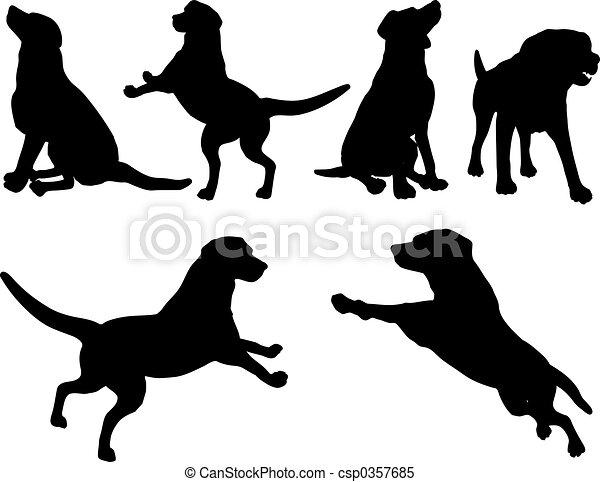 Dogs - csp0357685