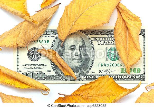 Dollar in autumn leafs - csp6823088
