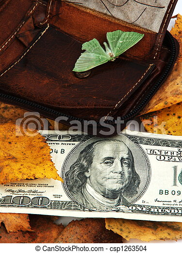 Dollar out of the wallet - csp1263504
