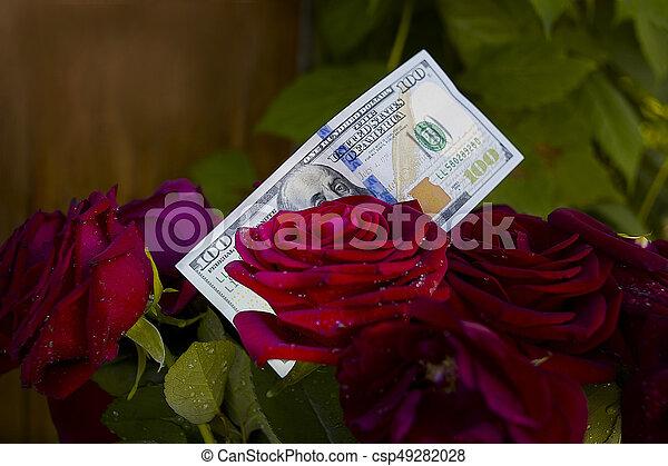 Dollars And Roses - csp49282028