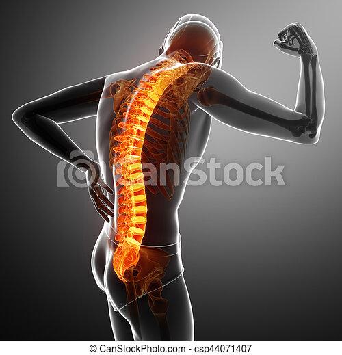 Hombre sintiendo el dolor de espalda - csp44071407