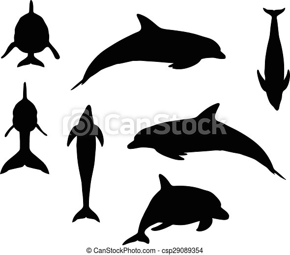 vector image dolphin silhouette isolated on white background