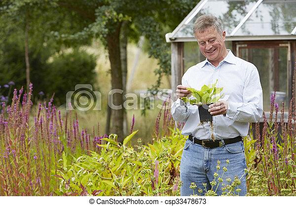 domů, starší, zahrada, povolit, voják - csp33478673