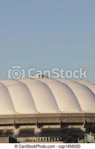 dome - csp1456020