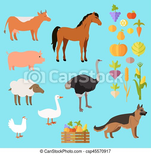 Domestic Animals Set near Fruit and Vegetable - csp45570917