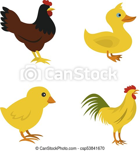 Domestic bird icon set, flat style - csp53841670