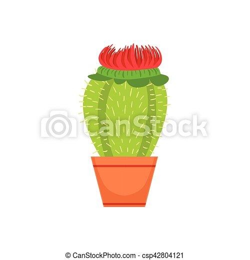 Doniczka Sklep Kwiat Ilustracja Pozycja Dekoracyjny Rośliny Wektor Rozkwiecony Dom Asortyment Kaktus Rysunek