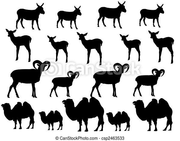 Donkey-camel-silhouette - csp2463533