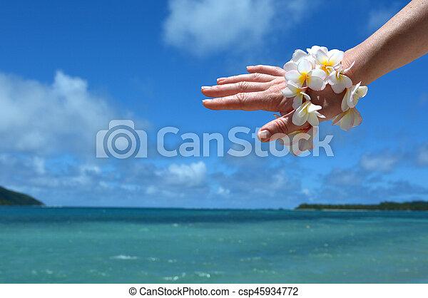 donna, frangipani, mano, tropicale, ricorso, decorare, fiori - csp45934772