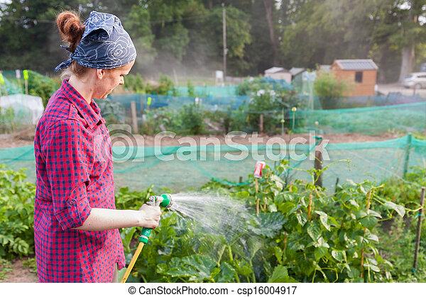 Donna Irrigazione Giovane Zucchini