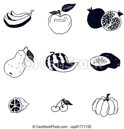 doodle fruit sketch black and white drawing - csp81771155