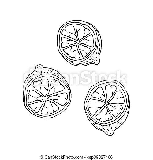 Doodle style or cartoon lemon fruit with contour. - csp39027466