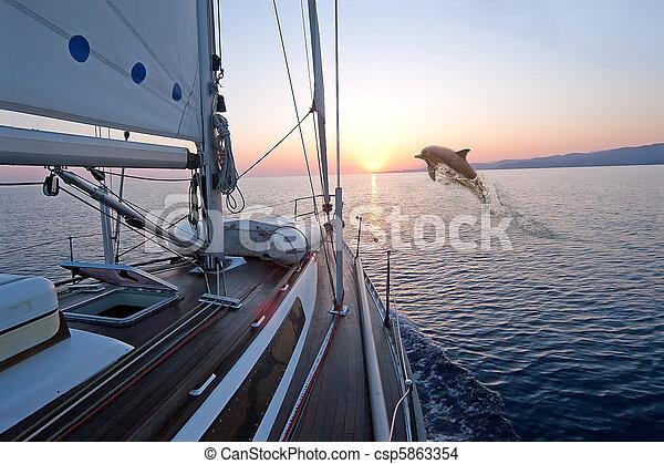 Doplhin jumping near sailing boat - csp5863354