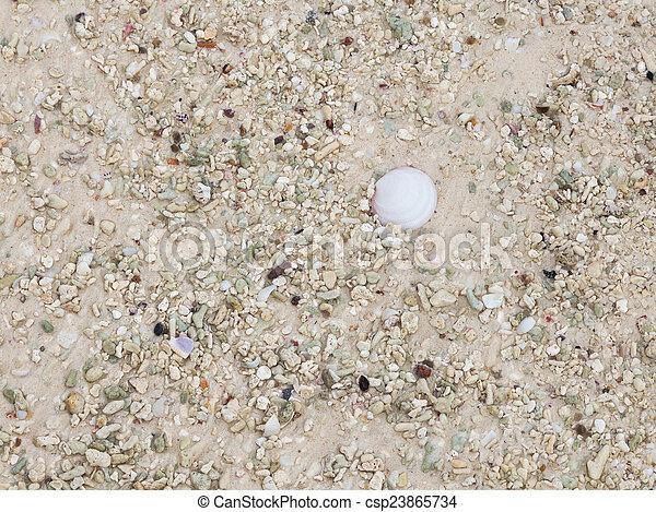 doppen, zand, fragmenten - csp23865734